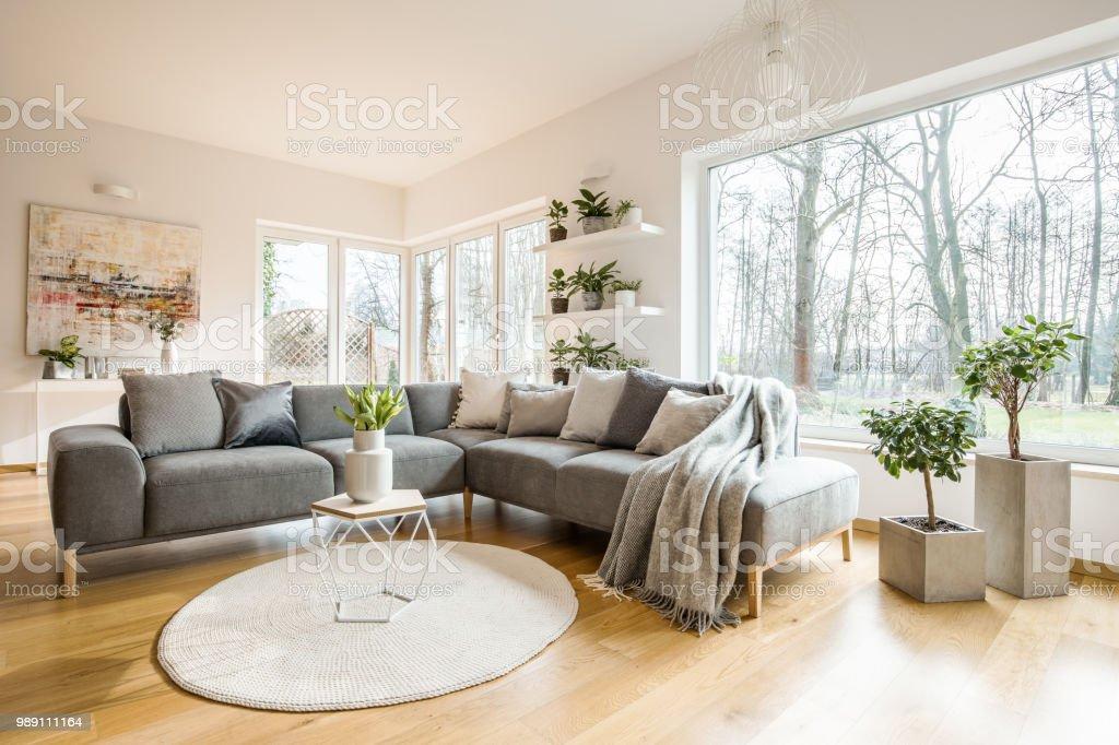 Decken Und Kissen Auf Ecke Grau Sofa Stehend In Weiss
