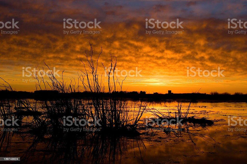 Blazing Sunset stock photo