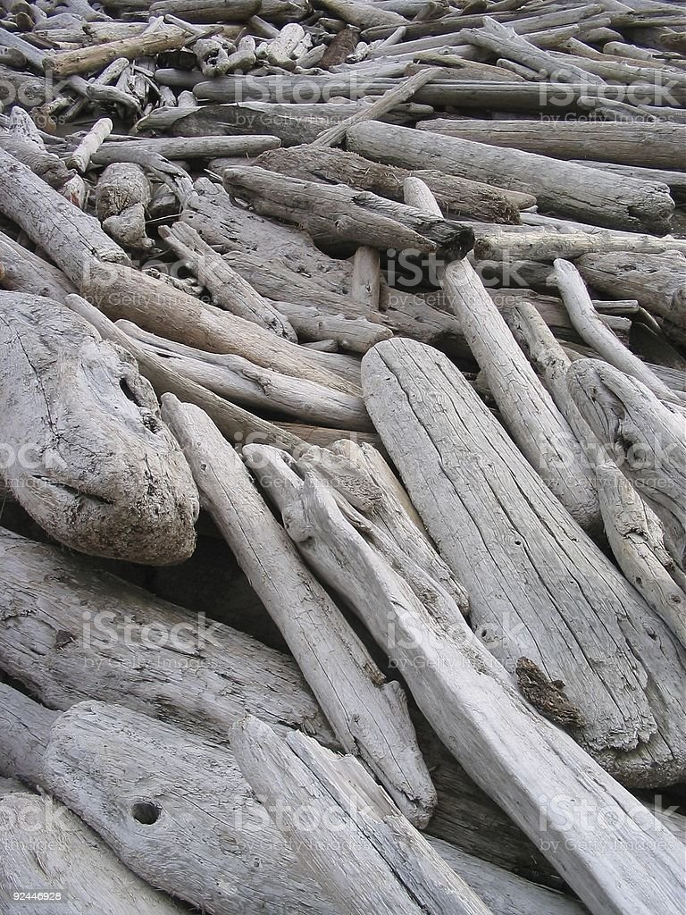 Bleached Driftwood royalty-free stock photo
