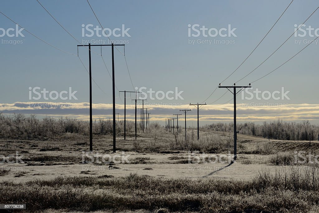 Bleak Field stock photo
