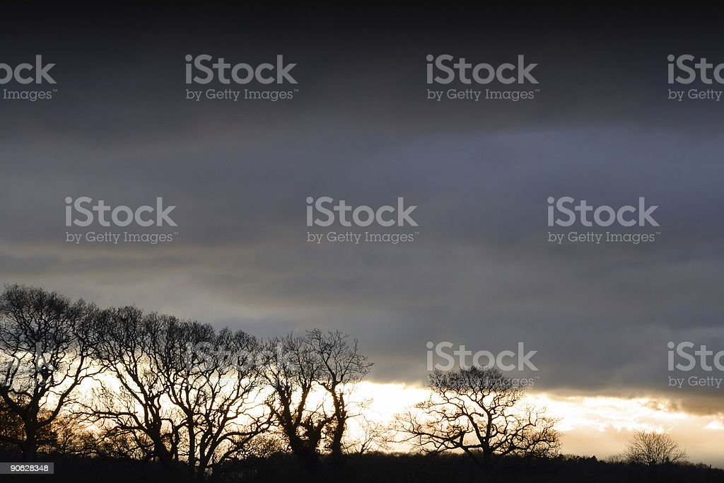 Bleak Mid Winter royalty-free stock photo