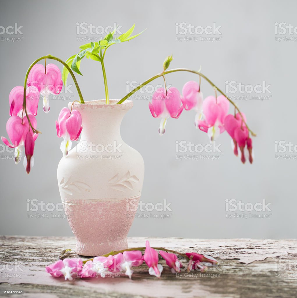 Bleeding heart flowers in vase stock photo more pictures of bleeding heart flowers in vase royalty free stock photo izmirmasajfo