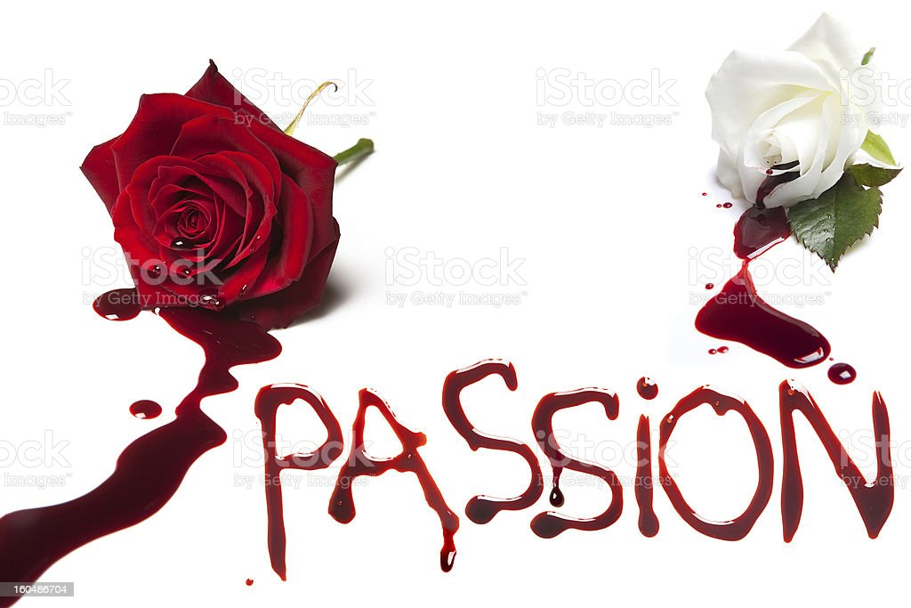 Bleeding roses for Passion stock photo