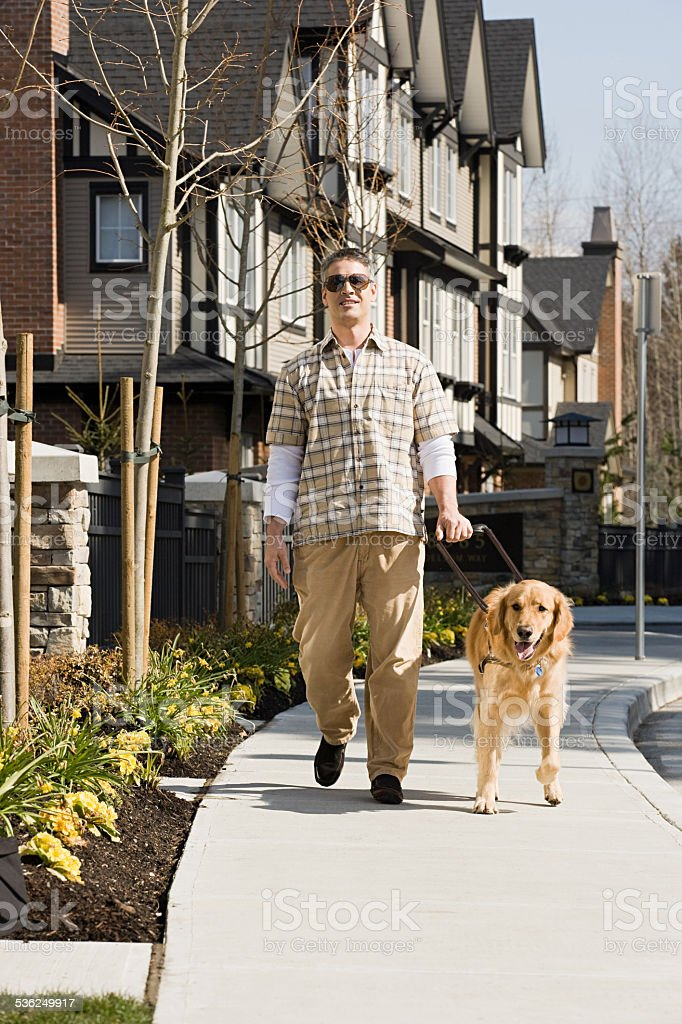 Blind man with a golden retriever stock photo