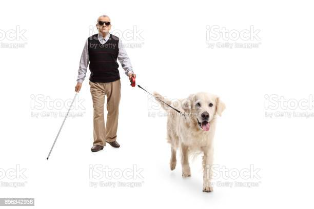Blind mature man walking with a stick and a dog picture id898342936?b=1&k=6&m=898342936&s=612x612&h=ss5fuqle cmi 6onjlkae j4irsnpsnakse kzmmhpk=