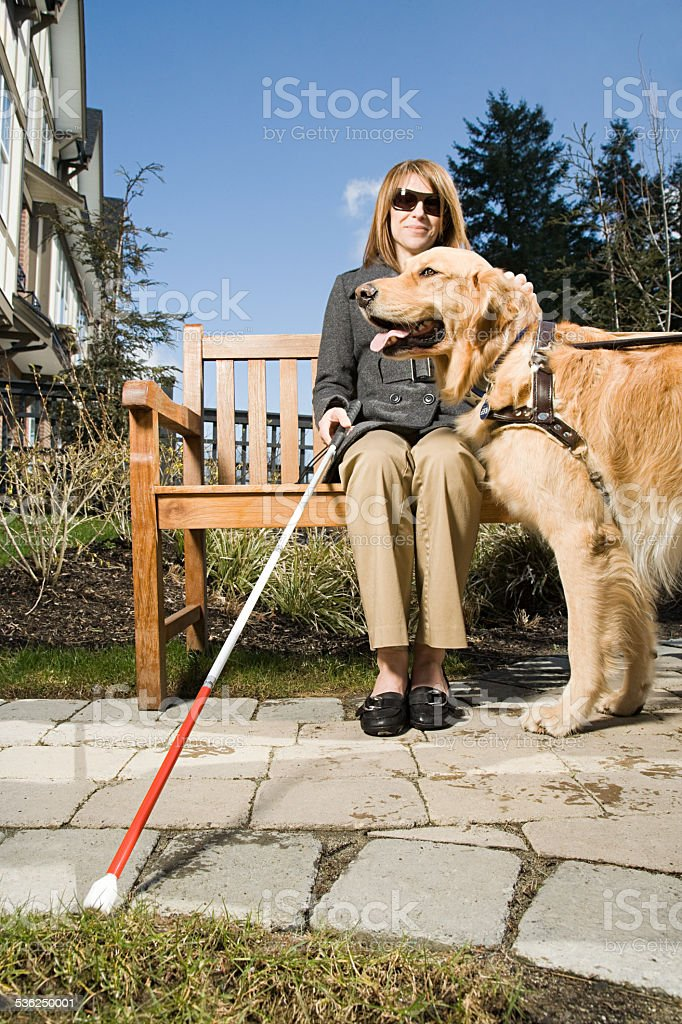 Blind woman with a guide dog stock photo