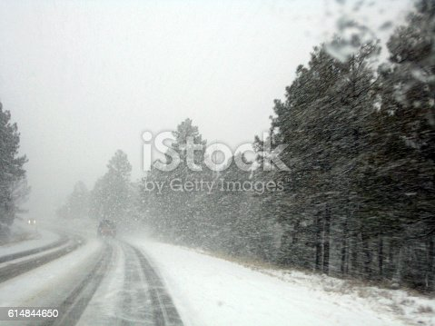 Driving in a blizzard through the mountains with pine trees