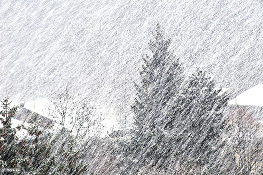 Blizzard stock photo