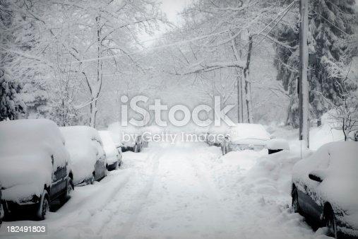 istock Blizzard 182491803