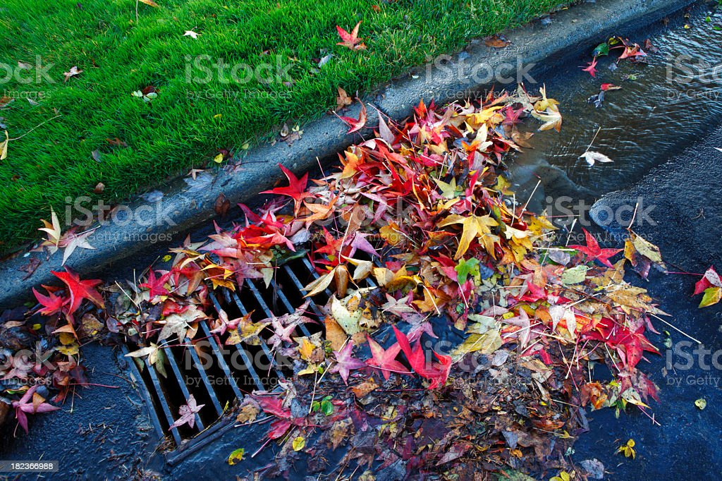 Blocked Drain. stock photo