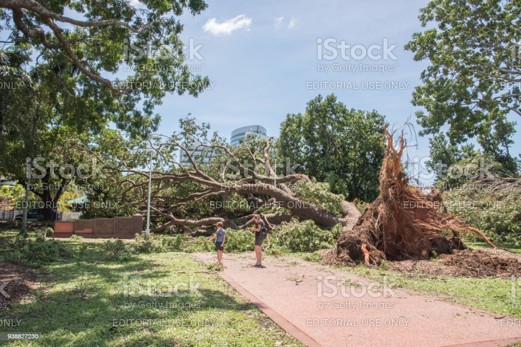 Blocked Path: Cyclone Marcus stock photo
