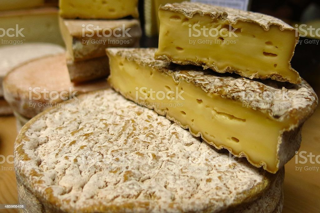 blocks of cheese from organic cow's milk stock photo