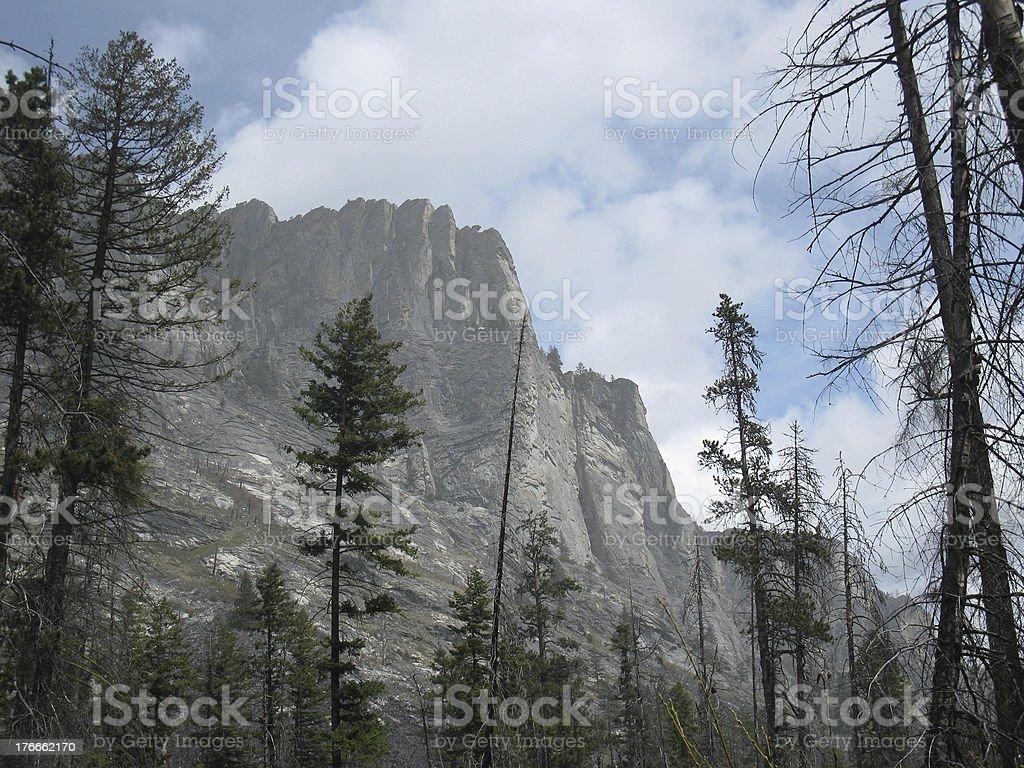Blodgett Canyon royalty-free stock photo