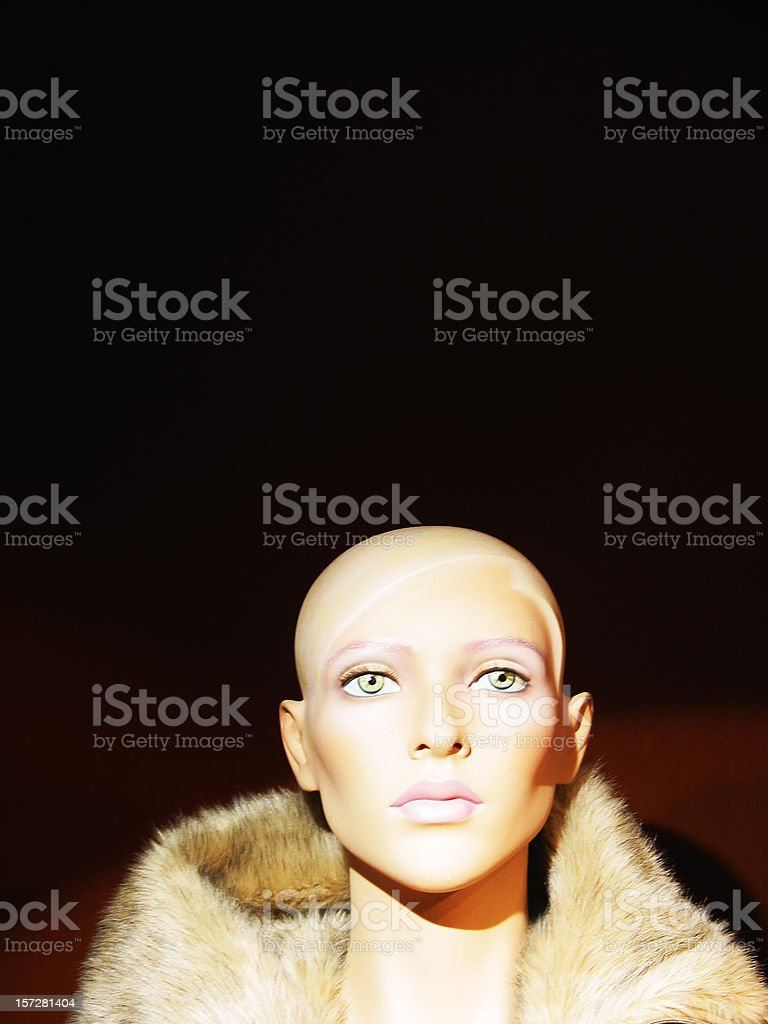Blond dummy! royalty-free stock photo