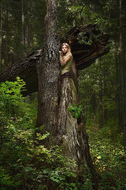 blondes mädchen in einem magischen wald - elfenkostüm damen stock-fotos und bilder