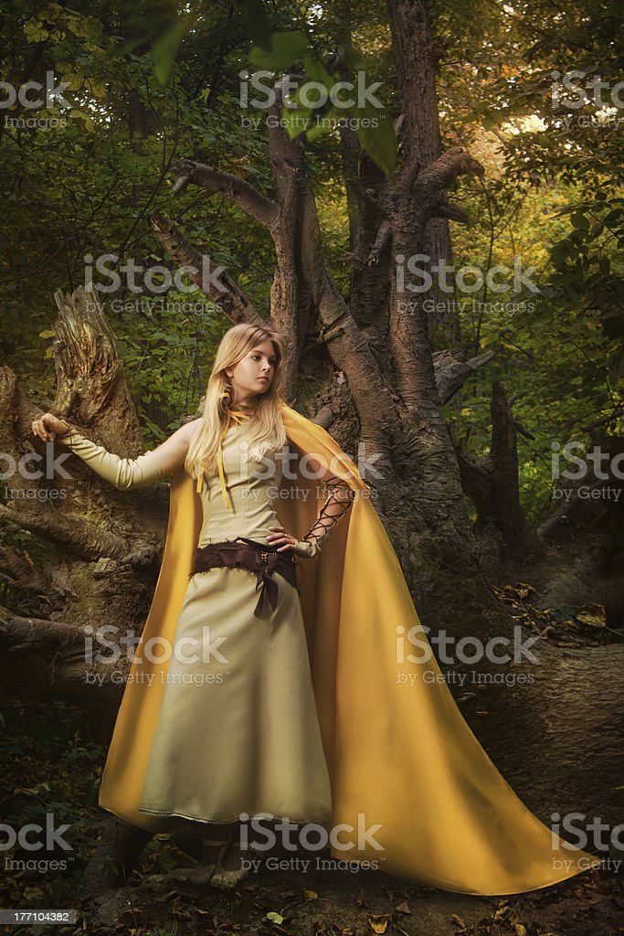 Blond girl in a magic forest royalty-free stock photo