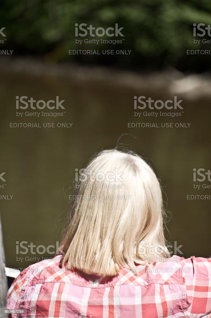 Blond Hair Girl stock photo