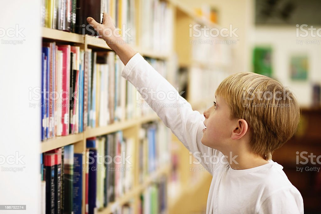 Blond schoolboy inspects the bookshelves at local library stock photo