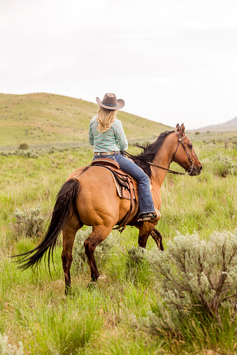 blonde cowgirl with horse at santaquin valley of Salt lake City SLC Utah USA
