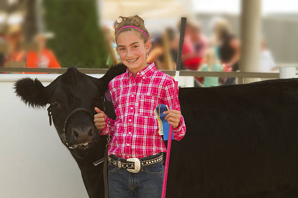 blonde girl in pink at a county fair next to a black cow - landbouwbeurs stockfoto's en -beelden