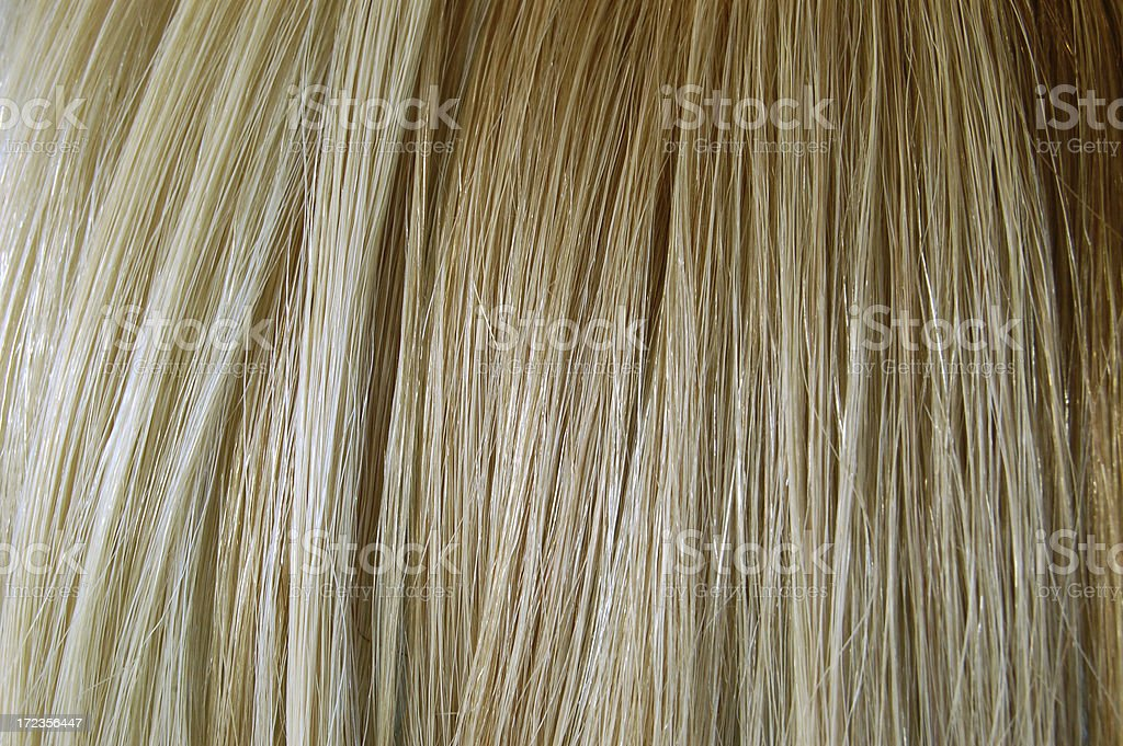 blonde hair royalty-free stock photo
