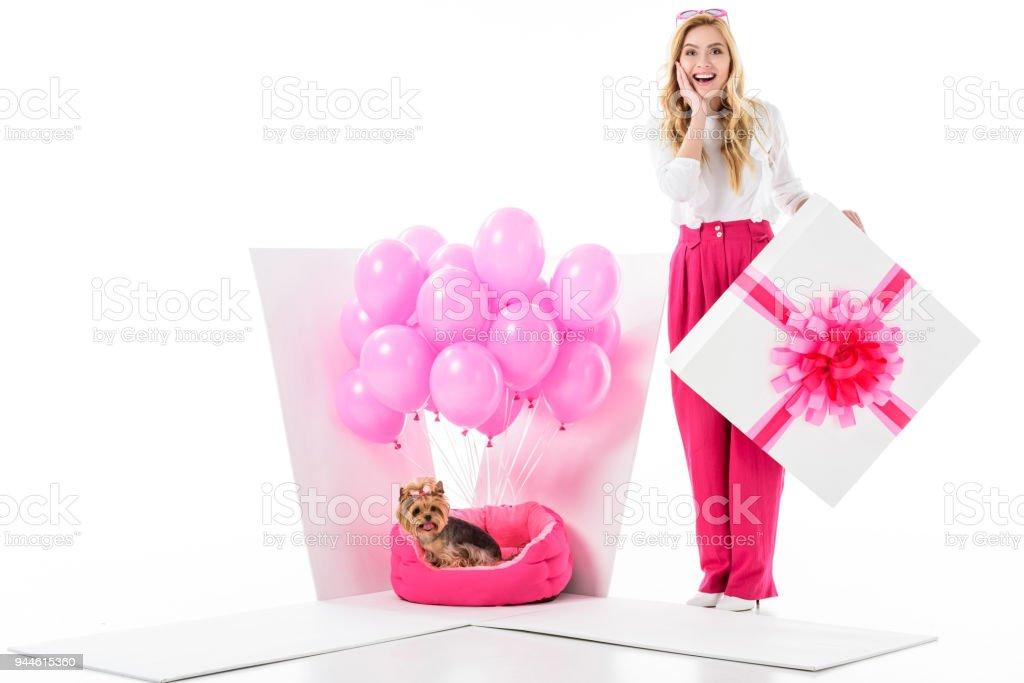 2cf325c6e Mujer rubia por caja de regalo con perro yorkie y globos color rosa aislados  en blanco