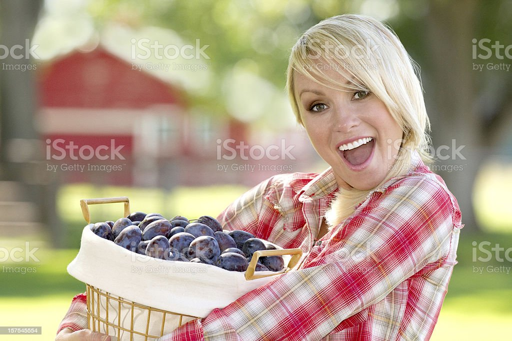 Blonde Woman Holding a Basket of Plums stock photo