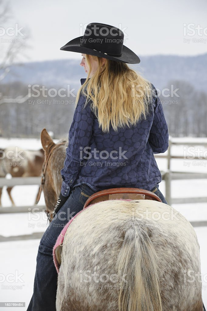 Blonde Woman Riding Appaloosa Horse in Winter, Rear View stock photo