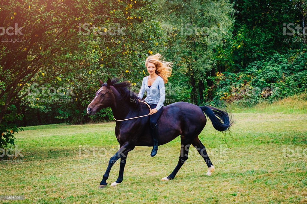 Blonde Woman Riding Canter With Black Horse Outdoors Stock Photo Download Image Now Istock