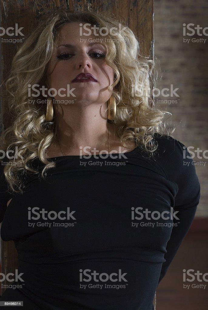 blondie 2 royalty free stockfoto