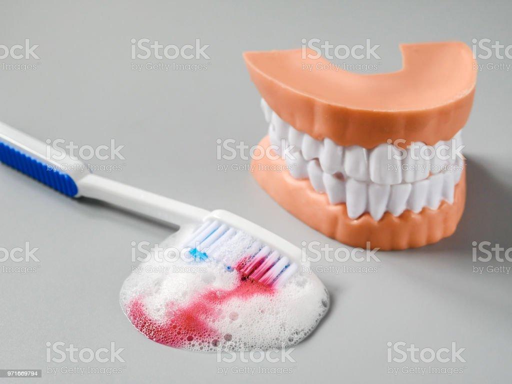 Sangre y pasta de dientes en el cepillo de dientes. foto de stock libre de 4eee88a52c82
