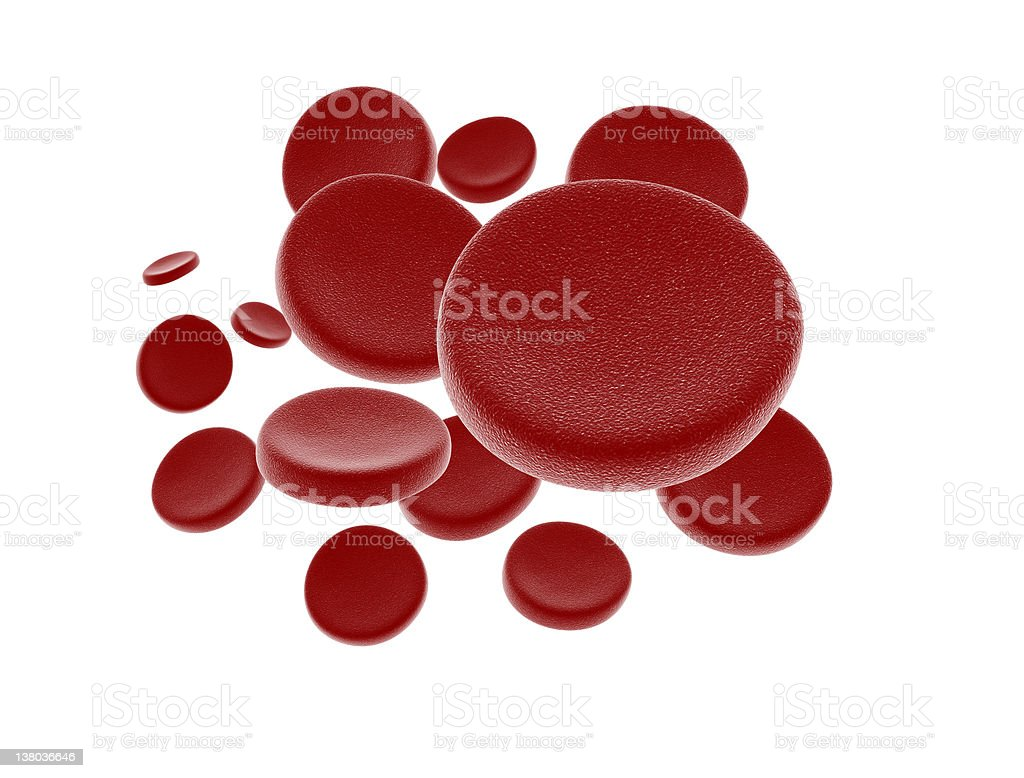 Blood cells isolated on white royalty-free stock photo