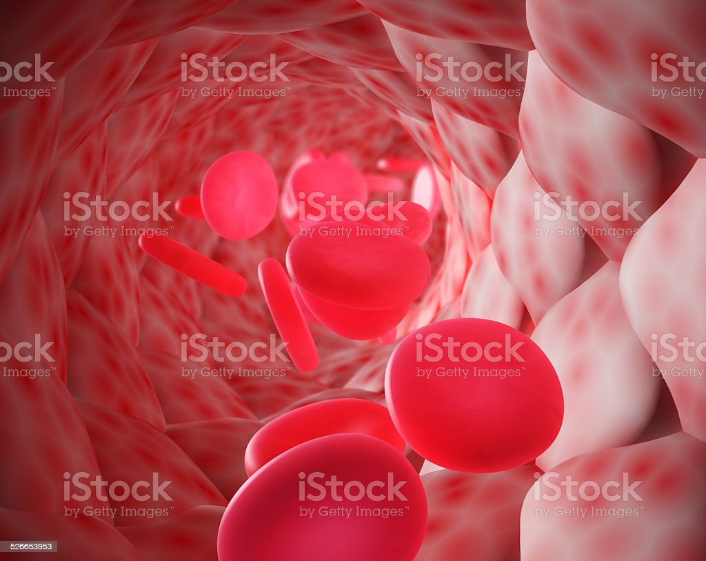 blood corpuscles stock photo