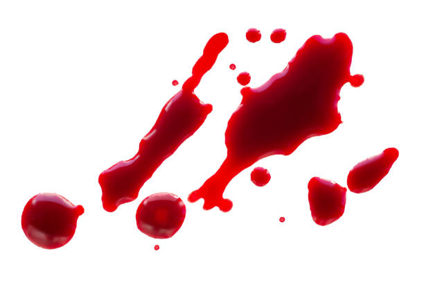 Blood drops isolated stock photo