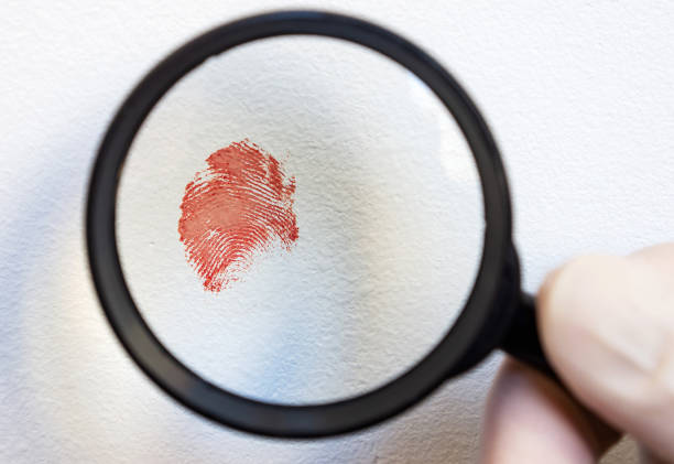 blood fingerprint through magnifying glass in hand of a forensic expert, crime scene. close-up, selective focus. - deductive stock pictures, royalty-free photos & images