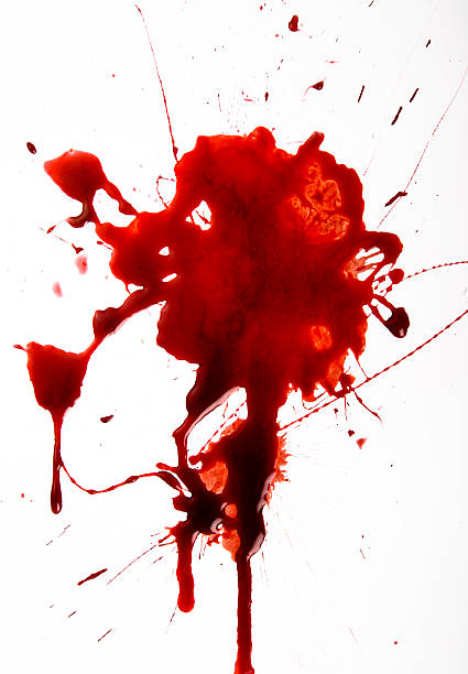 Blood Splat on White Background​​​ foto