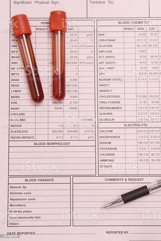 Blood test tube and  pen stock photo