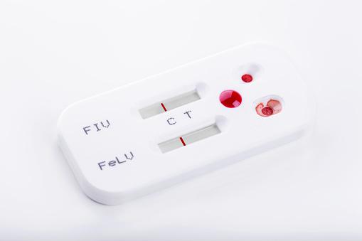 Blood Testing Kit Stock Photo - Download Image Now - iStock