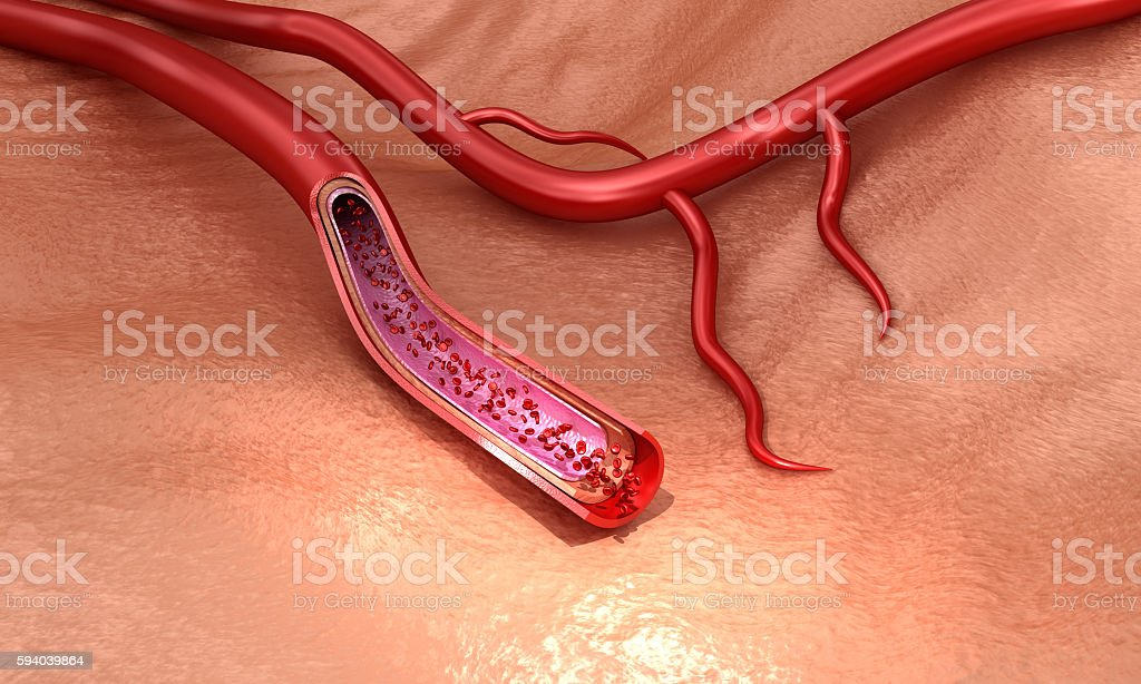 Blood vessel sliced macro with erythrocytes stock photo
