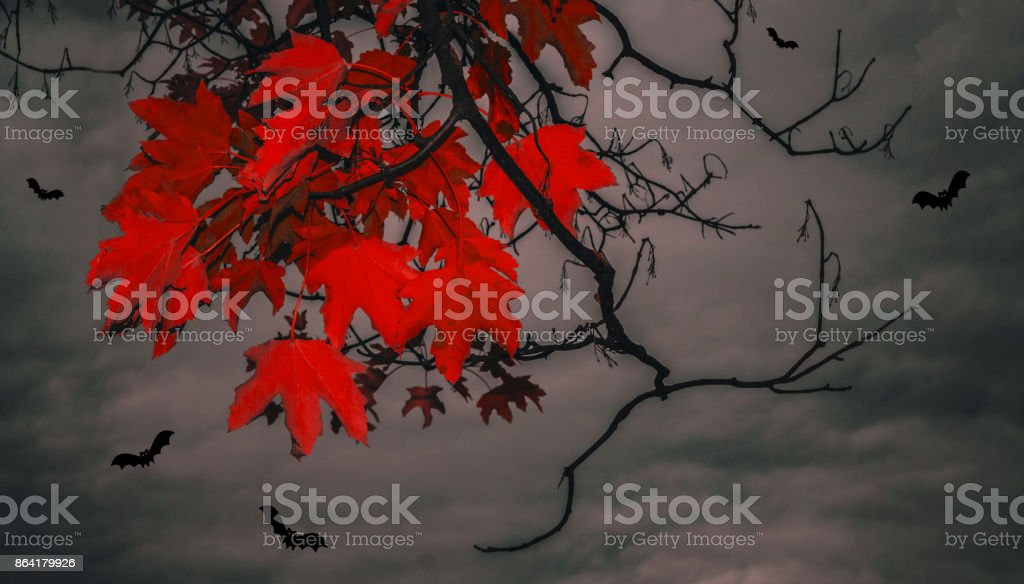 Bloody leaves and bats royalty-free stock photo