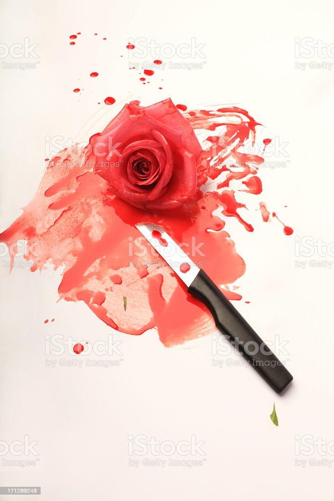 bloody rose stock photo