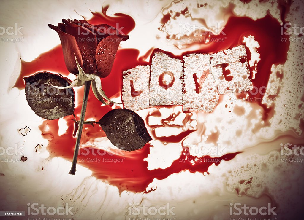 Bloody rose with love message stock photo