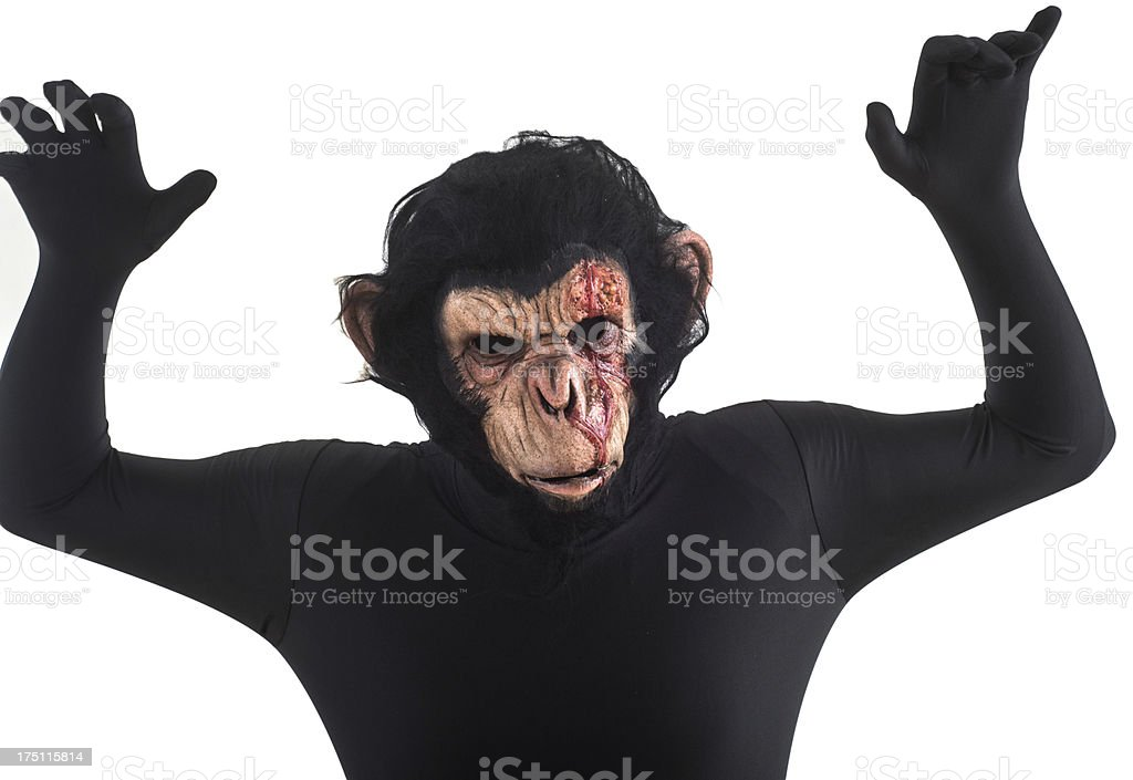 Bloody Scary Ape On White Background Stock Photo - Download