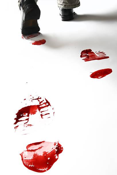 bloody schuh drucken, isoliert auf weißem hintergrund - malerei schuhe stock-fotos und bilder