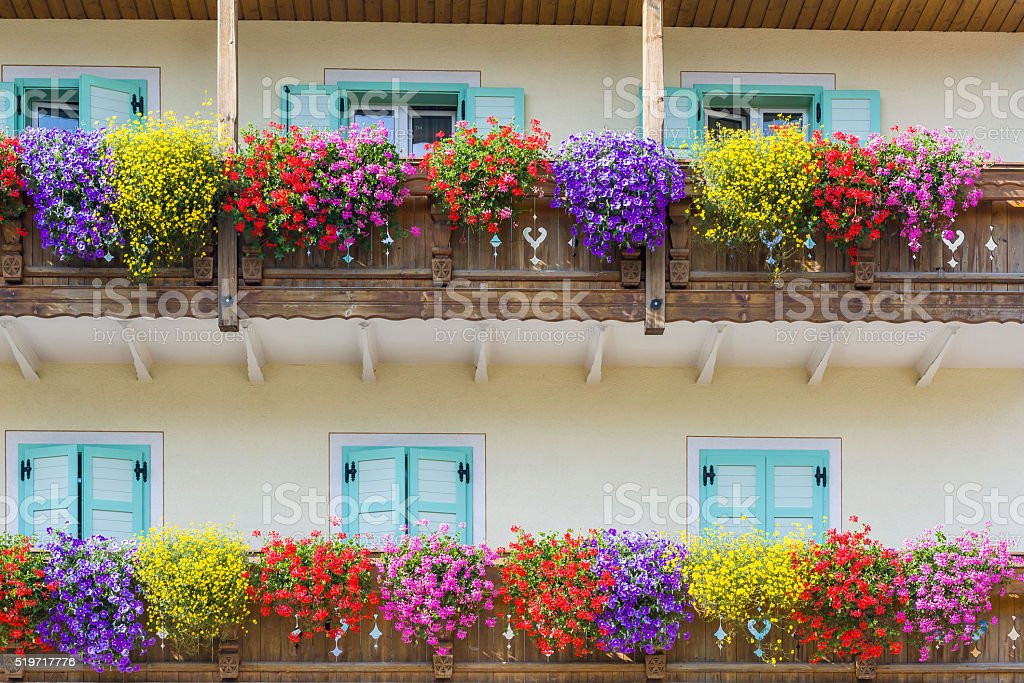 Blooming balcon - Photo
