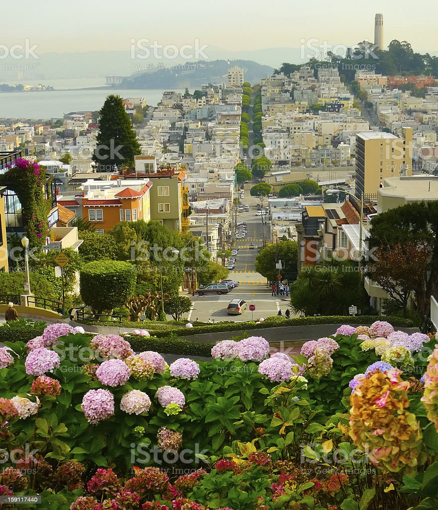 Blooming flowers overlooking Lombard Street in San Francisco royalty-free stock photo