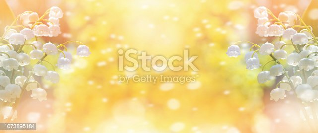 643781968 istock photo Blooming lilies of the valley. 1073895184