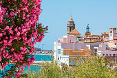 Blooming Oleander against the background of the historical center in the Sitges, Barcelona, Catalunya, Spain. Copy space for text.