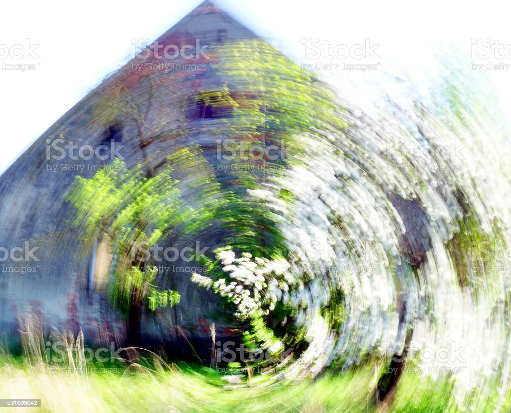 blooming stock photo