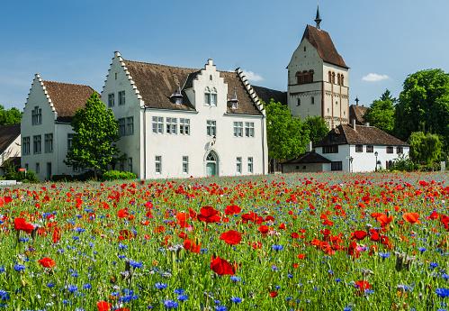 Blooming poppy field in front of Reichenau Abbey, Reichenau Island, Lake Constance, Germany